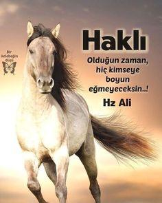Islam Muslim, Allah Islam, Rumi Quotes, Life Motto, Imam Ali, Galaxy Wallpaper, Meaningful Words, Cool Words, Motivation