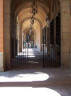 Parliament Avenue Palma de Malloca
