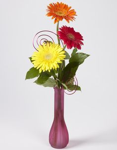 Thoughfully simple. Show you care with a bud vase filled with gerbera daisies.