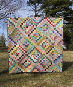olive and ollie: quilts + more