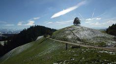 Langnau in Emmental - Switzerland Tourism