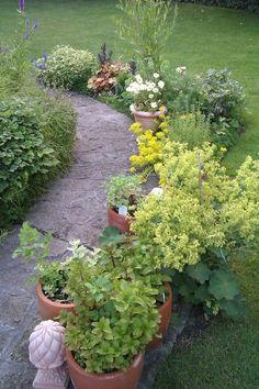 Így tarthatod távol a vakondot a kerttől környezetbarát módon | Balkonada Stepping Stones, Outdoor Decor, Plants, Gardening, Home Decor, Dolphins, Homemade Home Decor, Lawn And Garden, Plant