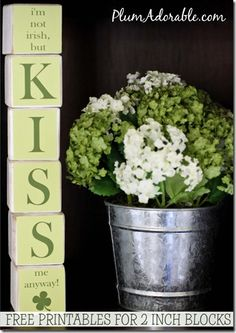 15 st. paddys day things to do with your kids. Free printable for 2 inch blocks.-cute centerpiece idea