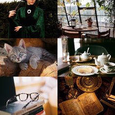 """Modern Harry Potter AestheticsMinerva McGonagall 1/2 """"Transfiguration is some of the most complex and dangerous magic you will learn at Hogwarts. Anyone messing around in my class will leave and not come back. You have been warned."""""""