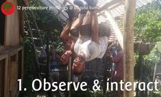 Permaculture principles 1. Observe and interact  Observe the need for a playground & interact by creating one!  And also: observing from another angle can be eye-opening for creative solutions.