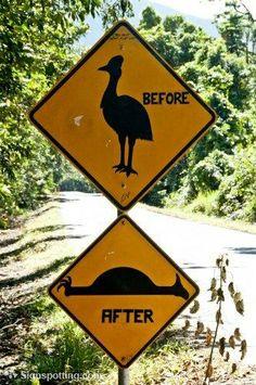 8 eyebrow-raising animal crossing signs (Photo credit: Nienkekrook via signspotting)