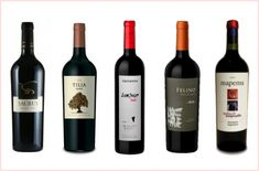 5 Vinhos argentinos pra aquecer seu inverno
