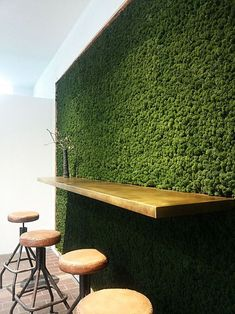 Home Decor Entryway 33 Amazing Living Wall Indoor Decoration Ideas - For the indoor beauty of natural living wall system, also called a green wall, is becoming quite popular. These walls are vertical structures and are . Island Moos, Vertical Garden Wall, Vertical Gardens, Moss Wall Art, Cheap Wall Decor, Home Decor Paintings, Nature Decor, Plant Wall, Cafe Design