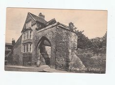 Castle Arch Guildford Postcard Unused Vintage early 1900's