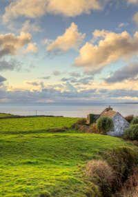 Ireland, Oh, Ireland. Seriously the most beautiful place on earth.