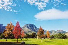 Autumn in Stellenbosch