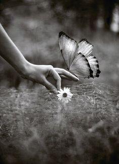 O PREÇO DO SILÊNCIO  O silêncio diante da verdade é compreensão. Diante da mentira é cumplicidade.  O silêncio diante de nossas obras é doação. Diante da obra do criador é contemplação.  O silêncio diante de nossas dificuldades é comodismo. Diante das dificuldades do próximo é falta de caridade.  O silêncio diante de nosso sucesso é simplicidade. Diante do sucesso dos outros é inveja.  O silêncio diante de um pedido é consentimento. Diante de uma ordem é subordinação.  O silêncio diante de…