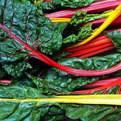 Sydney Sustainable Markets, Darlinghurst | 13 Best Organic Markets In Sydney