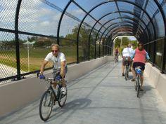 Bikes Sarasota Florida Sarasota Florida Bikes