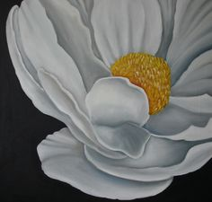 Magnolia Oleo Pilar Sala