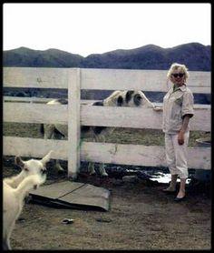 1954 / Marilyn et Milton GREENE en Arizona, pour une session photos.