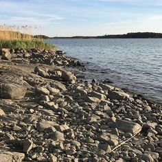 May yee. #uusikaupunki #landscape #sea #balticsea Baltic Sea, River, Landscape, Outdoor, Instagram, Outdoors, Scenery, Landscape Paintings, Outdoor Living