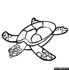 turtle coloring page free turtle online coloring