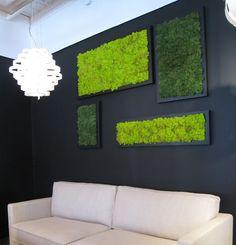Creating art with moss (that needs no water or maintenance! Moss Wall Art, Moss Art, Diy Wall Art, Wall Art Sets, Framed Wall Art, Wall Decor, Plant Wall, Plant Decor, Solar Light Chandelier