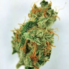 Hashberry.Buy Marijuana/ Buy weed /Buy cannabis and marijuana products.You have been thinking of  where to get the oldest and the best marijuana strains as well as concentrates and edibles, and place your order to get in shipped within 48 hours max.No Card needed.Every transaction  with us is discreet .More info at.. www.onlinecannabissupply.com Text or call +1(951) 534 5163