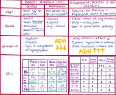 My Notes for USMLE : Photo