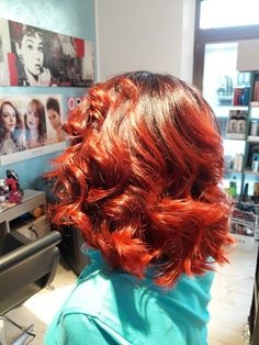 Chatoushe red fire