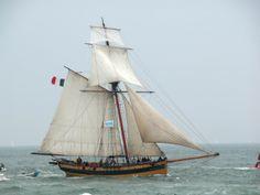 Charles Ii Of England, St Malo, Man Of War, Wooden Ship, Nautical Art, Model Ships, Tall Ships, Water Crafts, Yachts