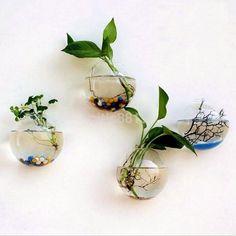 Fish & Aquariums Adroit Glass Wall Mounted Terrarium Hanger Planters Bubble Bowl Vase Multi Shape Option