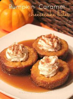 Pumpkin Caramel Cheesecake bites, dessert recipe