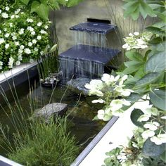 Contemporary concrete water feature softened with big, leafy green ...