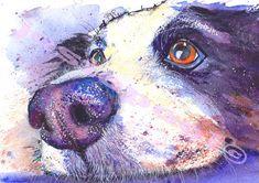 Border Collie Dog Puppy Hound Print of Original by JaPeyArtnStuff