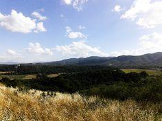 Hills, Tuscany