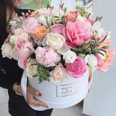 #bloom #fleur