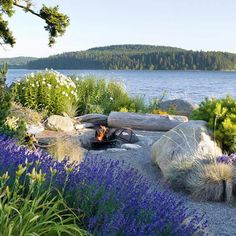 Echo the Landscape - Lush Puget Sound Vacation Home - Coastal Living Beach Landscape, House Landscape, Landscape Architecture, Landscape Design, Garden Design, Seaside Garden, Coastal Gardens, Beach Gardens, Outdoor Gardens