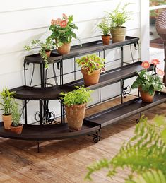 Embellished Steel Plant Stands. Straight plant stand $89.95 without the trays. For Brad's bonsai trees.