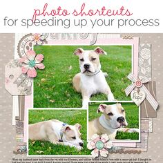 Speed Up Your Scrapbooking With Photo Shortcuts | Get It Scrapped