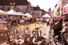 Médiévales de Tonnerre, du 12 au 14 septembre prochain.