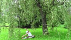 Side seated wide angle pose Wide Angle, Poses, Country, Plants, Figure Poses, Rural Area, Country Music, Plant, Planets