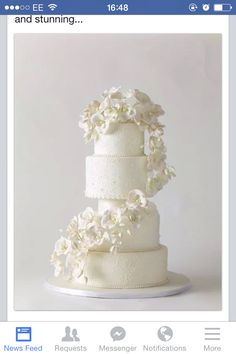 No matter if you prefer elegant, simple, or unique wedding cake designs you will be blown away by our list of amazing wedding cakes. Orchid Wedding Cake, Orchid Cake, Pretty Wedding Cakes, White Wedding Cakes, Elegant Wedding Cakes, Beautiful Wedding Cakes, Wedding Cake Designs, Pretty Cakes, Wedding Cake Toppers