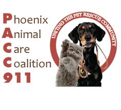 list of Arizona resources for low cost and emergency veterinary care. Phoenix Animal, Animal Welfare, Pet Care, Dogs And Puppies, Dog Cat, Community, Pets, Animal Care, Animals