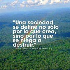 ...por lo que se niega a destruir. Sostenibilidad - Comunidad - Google+
