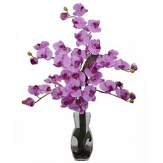 Nearly Natural Phalaenopsis With Vase Silk Flower Arrangement - Asstd... (425 BRL) ❤ liked on Polyvore featuring home, home decor, floral decor, silk floral, fake flowers, faux florals and pink flower arrangement