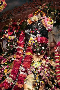 Krishna covered in amazing flower garlands. Deity