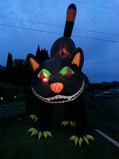 2012 - Giant kitty at McMillan Farms Farms, Kitty, Little Kitty, Homesteads, Kitty Cats, Kitten, Cats