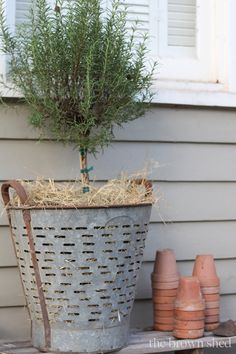 Vintagee French Olive Bucket The Brown Shed Decorating with Vintage Pieces   Its a Different Language!