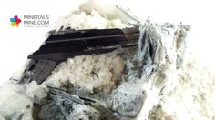 Byssolit- ładne zielone włókna , czarne kryształu Egirynu, biały Albit, oraz Kalcyt  Ładna kontrastowa kombo szczotka     Pochodzenie: Skardu, Pakistan  Wymiary: 9.5 x 7.8 x 4.6 cm  Waga: 255 g  Wzór chemiczny: Egiryn NaFe(Si2O6)  Minerał towarzyszący: Biały Albit, Zielony włóknisty Byssolit, lekko zółty Kalcyt, Czarny Egiryn