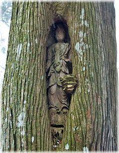 画像:如意輪寺の観音杉(観音像) Asian Sculptures, National Art Museum, Greek Statues, Little Buddha, Samurai Art, Buddhist Art, Sacred Art, Religious Art, Asian Art