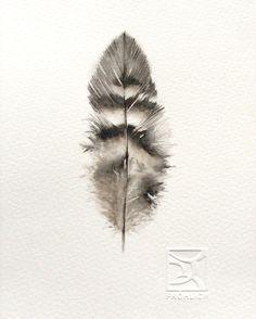 Feather  Watercolor Lorena Fröhlich Mohr
