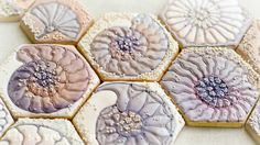 Fossil Ammonite Sugar Cookie: a Royal Icing and Edible Lustre Creation