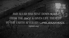 Allah has sent down rain